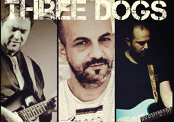 three.dogs